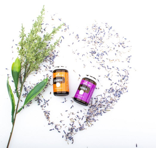 Jual Lavender Essential Oil Young Living