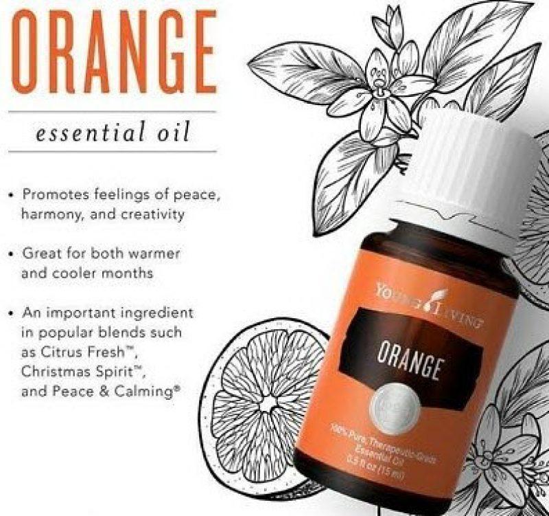 Orange Young Living, Manfaat dan Kegunaan √