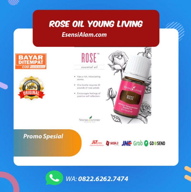 Rose Young Living Oil, Manfaat, Kegunaan dan Harga