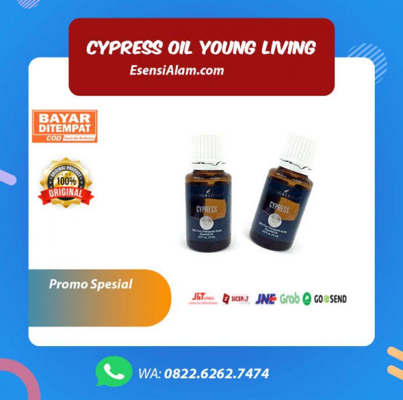 Cypress Young living Oil, Manfaat dan Kegunaan