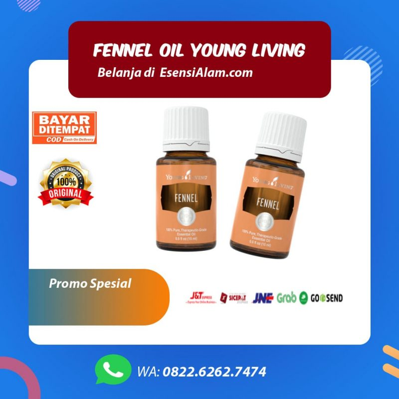 Manfaat dan Kegunaan Fennel Young Living Essential Oil √